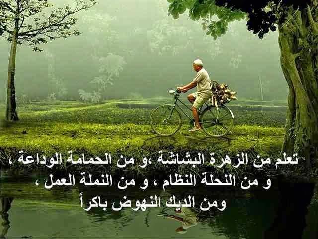 بالصور صور عن الحياة , اجمل صور عن الحياه 3487