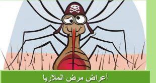 بالصور مرض الملاريا , اعراض واسباب مرض الملاريا 3488 3 310x165