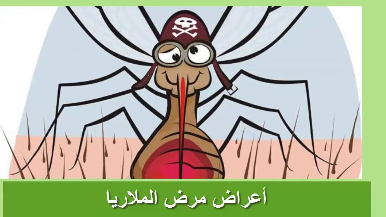 صوره مرض الملاريا , اعراض واسباب مرض الملاريا