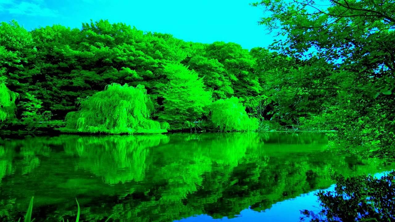 بالصور صور من الطبيعة , اجمل صور عن الطبيعة 3495 3