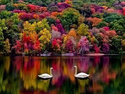 بالصور صور من الطبيعة , اجمل صور عن الطبيعة 3495 6