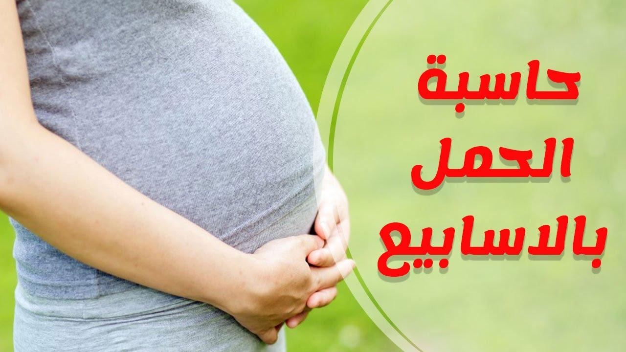 بالصور حاسبة الحمل بالاشهر , كيفيه حساب الحمل بالاشهر 3521 2