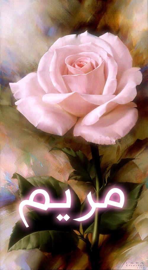 بالصور صور اسم مريم , اجمل صور لاسم مريم 3566 5