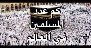 صور كم عدد المسلمين في العالم , تعداد المسلمين حول العالم