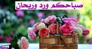 صورة احلى صباح , الصباح اجمل لحظات اليوم 3825 12 310x165