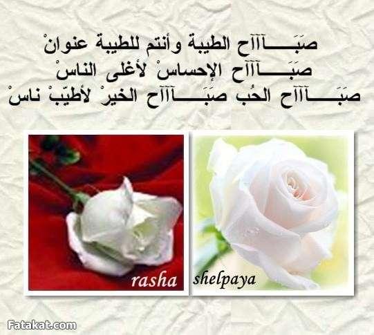 بالصور صباح الصباح , صبح صبح يا عم الحج احلى صباح 385 6