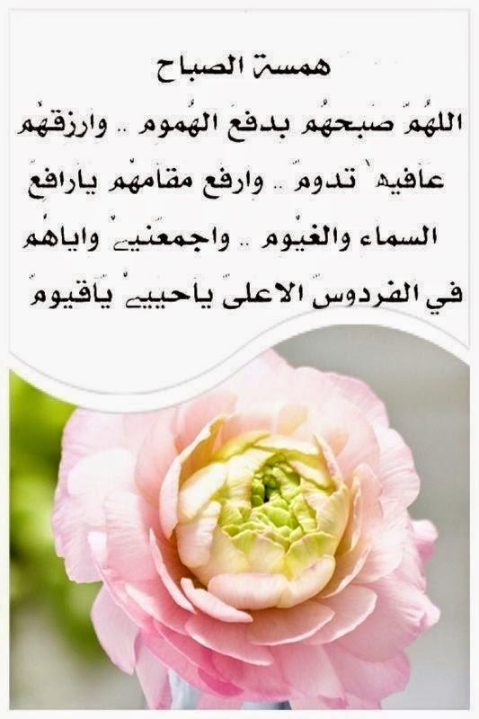 بالصور صباح الصباح , صبح صبح يا عم الحج احلى صباح 385 7