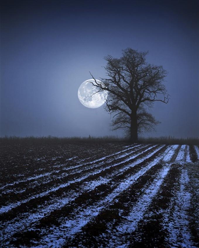بالصور اجمل صور للقمر , احلى واجمل وارق صور لوجه القمر 403 2