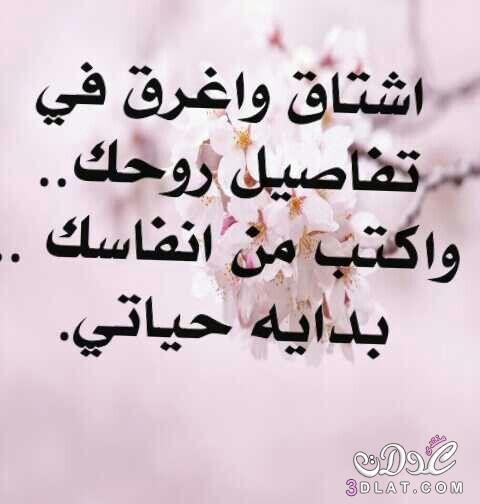 بالصور صور وكلام حب , احلى صور عن احلى كلام حب 514 1