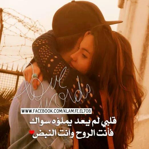 بالصور صور وكلام حب , احلى صور عن احلى كلام حب 514 2
