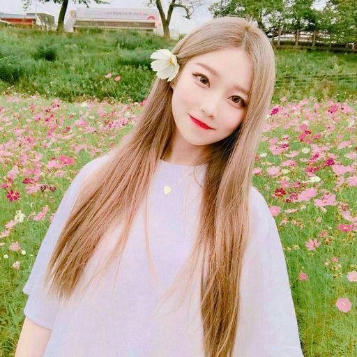 صوره صور كوريات , اجمل بنات في كوريا حلوين قوي