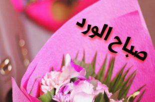 صورة صور صباح الورد , صباح الفل صباح الياسمين صباح النرجس