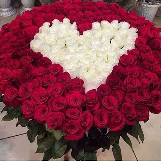 بالصور صور بوكيه ورد , اجمل بوكيه ورد جميل ورقيق 575 2