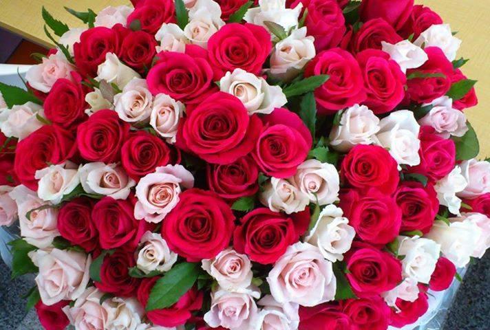 بالصور صور بوكيه ورد , اجمل بوكيه ورد جميل ورقيق 575 6