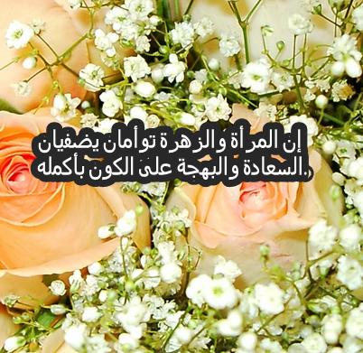 بالصور كلمات عن الورد , اجمل ماقيل في الورود 6447 1