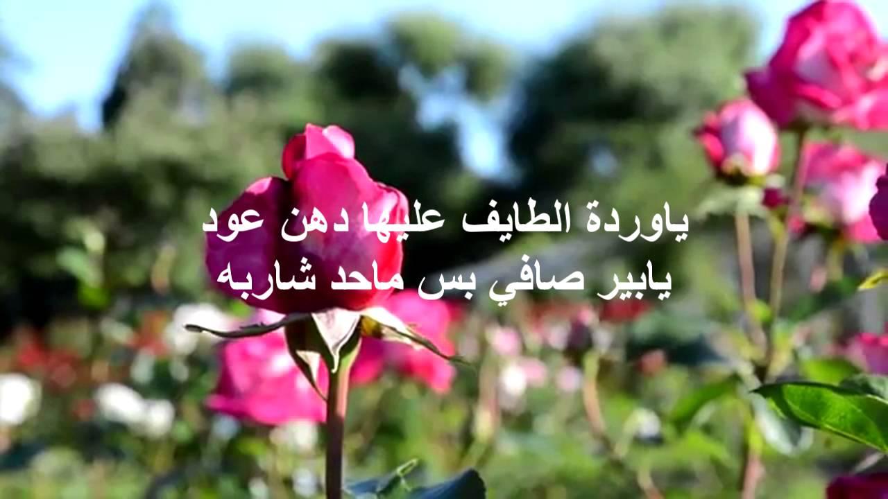 بالصور كلمات عن الورد , اجمل ماقيل في الورود 6447 5