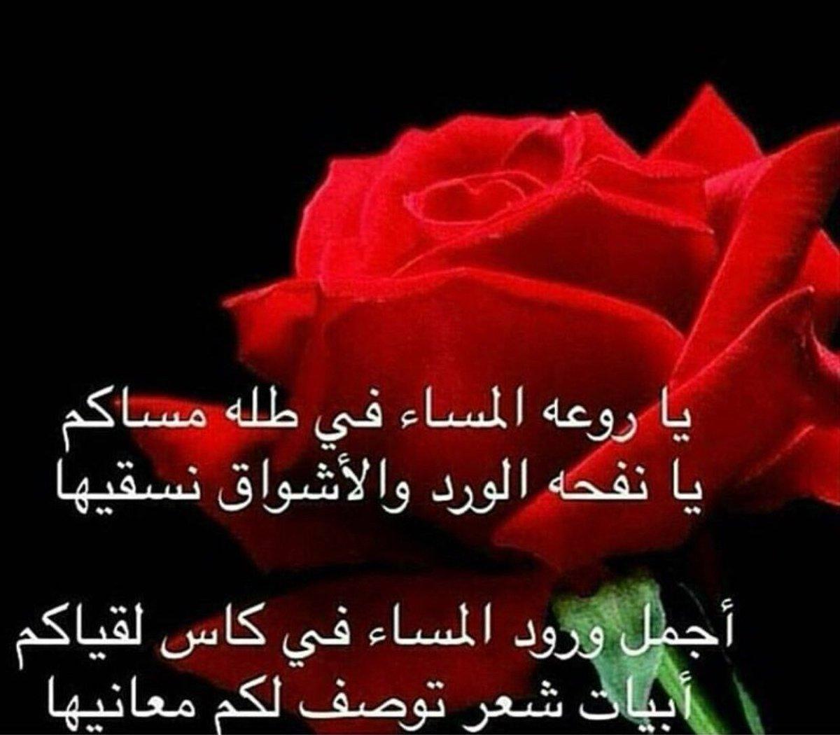 بالصور كلمات عن الورد , اجمل ماقيل في الورود 6447 6