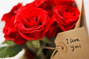 صوره زهور جميلة , ارق باقات ورد مميزه