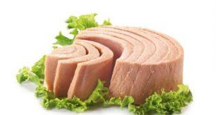 صوره رجيم التونة , تعرف علي افضل انواع الرجيم رجيم التونه