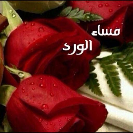 بالصور صور مكتوب عليها مساء الخير , مسجات مسائيه معطره براحه الزهور 915 11
