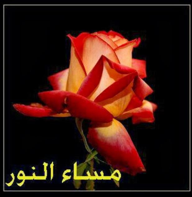 بالصور صور مكتوب عليها مساء الخير , مسجات مسائيه معطره براحه الزهور 915 6