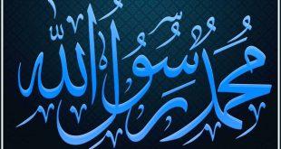 بالصور تفسير رؤية الرسول في المنام دون رؤية وجهه , ادق تفسير لرؤيه النبي في المنام 963 3 310x165