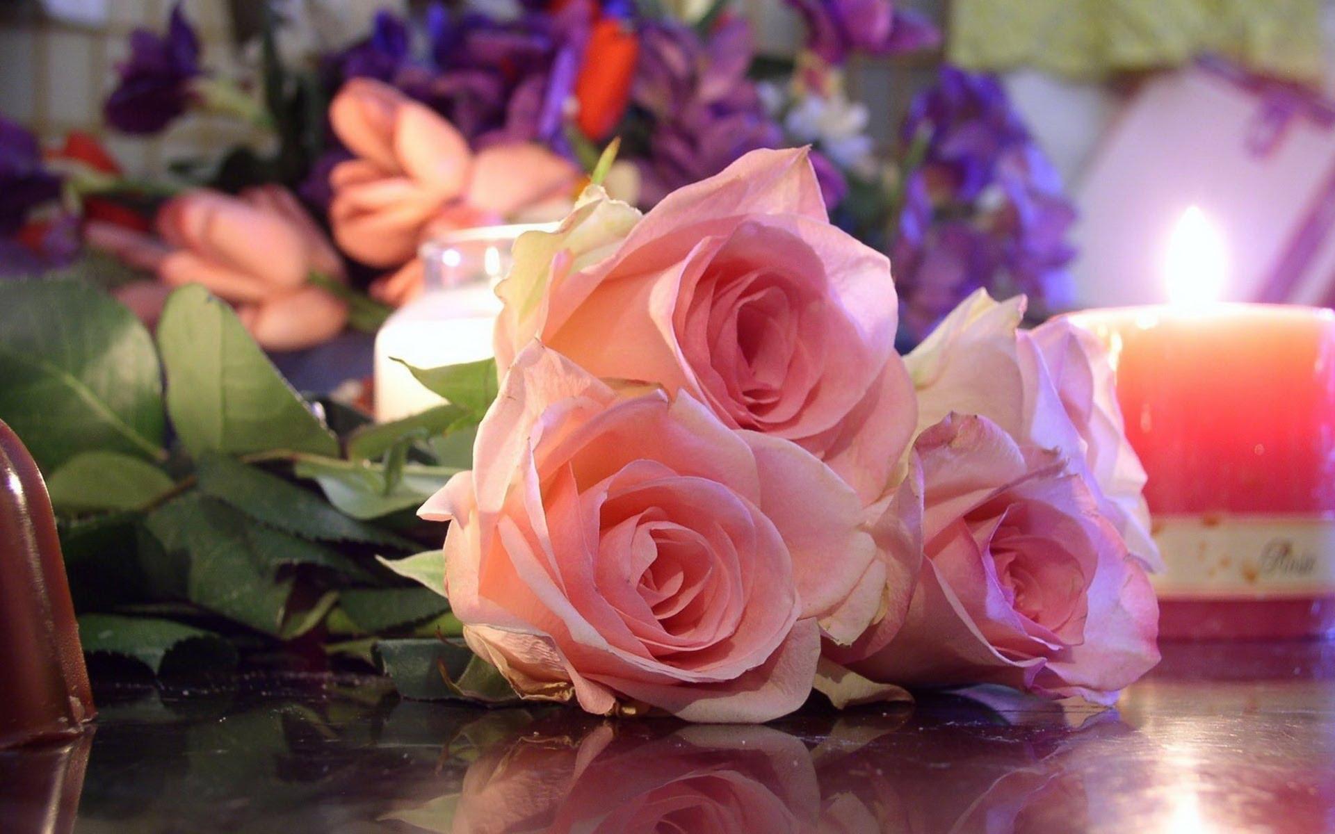 بالصور ازهار جميلة , ارق ورود رومانسية 982 10