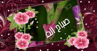 بالصور صباح الورد والفل , صباح معطر بالفل والورد والياسمين باذن الله 668 15 310x165