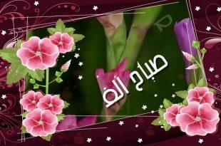 صورة صباح الورد والفل , صباح معطر بالفل والورد والياسمين باذن الله