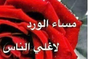 بالصور بطاقات مساء الورد , هذا العام بطاقات جميلة لكلمة مساء الورد على الحلوين 671 13 310x205