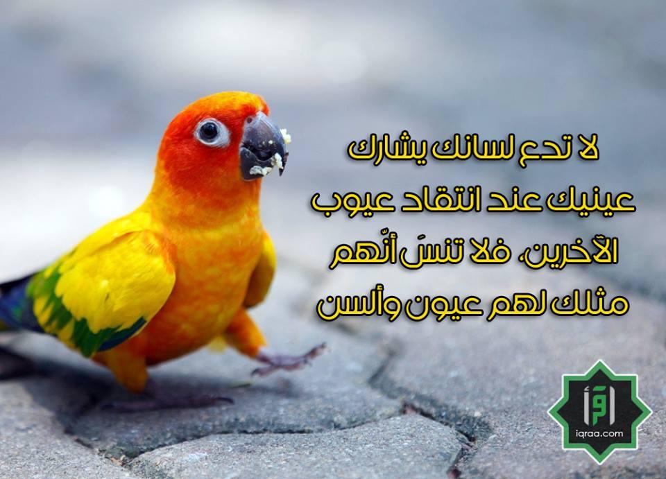 بالصور اجمل العبارات الدينية , كلمات دينية ماثورة لراحة نفسية مضمونه 704 2