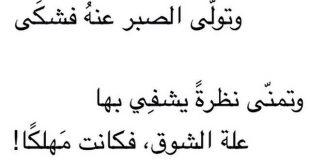 بالصور ابلغ بيت شعر في الغزل , شعر حب هتتفاجئ من جماله لما تسمعه 841 3 310x165