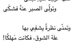 بالصور ابلغ بيت شعر في الغزل , شعر حب هتتفاجئ من جماله لما تسمعه 841 3 310x205