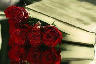 بالصور اجمل ما قيل في الحب , رومانسيات حب راقية بالصور 863 11 310x205