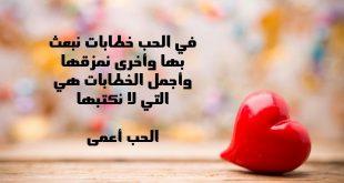 بالصور حكم في الحب , افضل ما قيل عن الحب 867 12 310x165