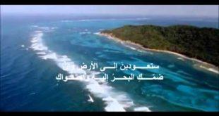 بالصور معلومات عن البحر , اروع واجمل العبارات والكلمات عن البحار 14862 2 310x165
