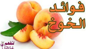 بالصور ما فوائد الخوخ , فاكهة الخوخ والفائدة منها 14930 2 310x165