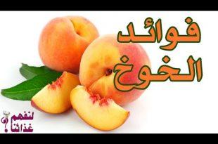 بالصور ما فوائد الخوخ , فاكهة الخوخ والفائدة منها 14930 2 310x205