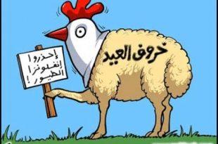 صورة صور مضحكه عن عيد الاضحى , اروع وارق الصور البسيطة المضحكة