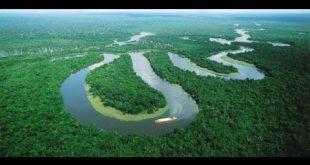 صور معلومات عن غابات الامازون , اروع المعلومات عن الغابات