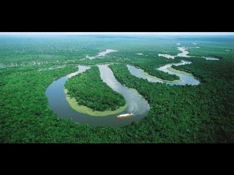 صورة معلومات عن غابات الامازون , اروع المعلومات عن الغابات