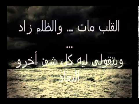 بالصور كلام رومنسي مصري , اروع وارق العبارات والكلمات الرقيقة 15093 1