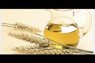 صور فوائد زيت جنين القمح للبشره , اروع الزيوت الجميلة لبشرة