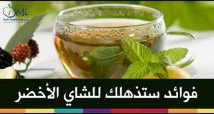بالصور فوائد الشاي المغربي , اروع واجمل انواع الشاى المغربى 15212 2 310x165