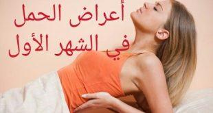 بالصور نصائح للمراة الحامل في الشهر الاول , العديد من النصائح للمراة الحامل 15240 2 310x165