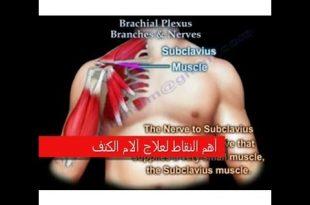 صور اسباب التهاب المفاصل , المفاصل واجزاء الجسم