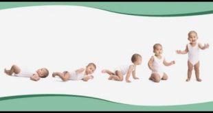 صور صور مراحل نمو الطفل , اروع الصور عن الطفل المولود