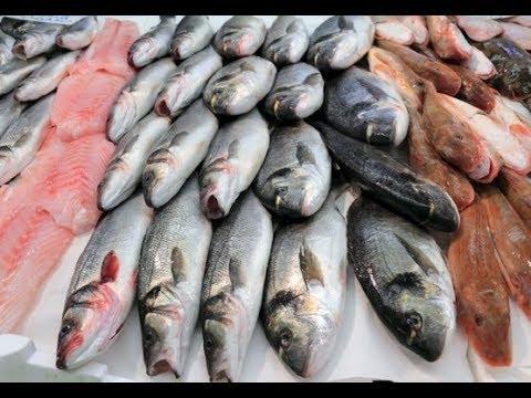صور لحم السمك في المنام , الاحلام وتفسيرها وما تدل عليها