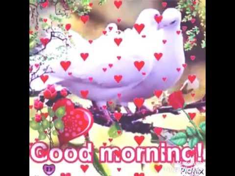 بالصور صباح الخير عليكم , اروع واجمل العبارات والكلمات فى كل صباح 16148 10
