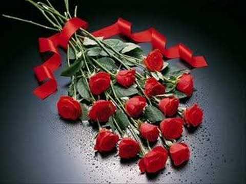 صورة الصور الورود الجميلة , اروع واجمل الصور الورد الرقيقة الجميلة 16159 9